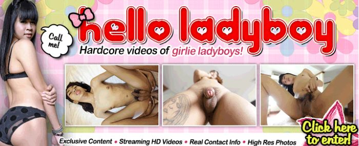 enter Hello Ladyboy members area